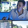 Globecast to debut its Digital Media Hub for sports and live events at IBC