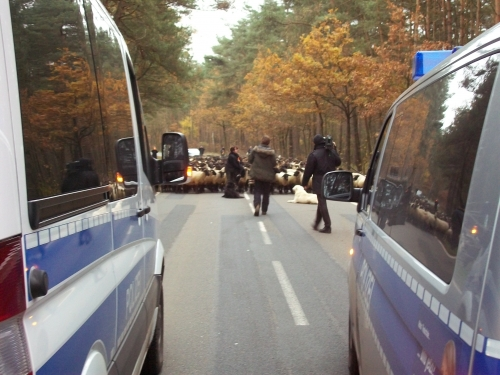 The convoy took 3 days to complete its journey, thanks to thousands of dedicated activists staying for over 40 hours before being removed by police