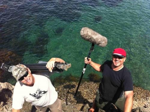 Hunting Mutton Bird - Matauri Bay