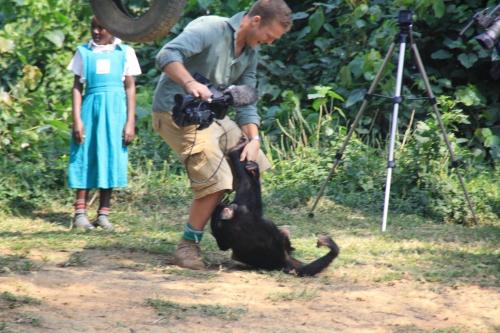 Filming Chimpanzees for CNN